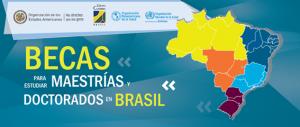 MAESTRIAS Y DOCTORADOS EN BRASIL